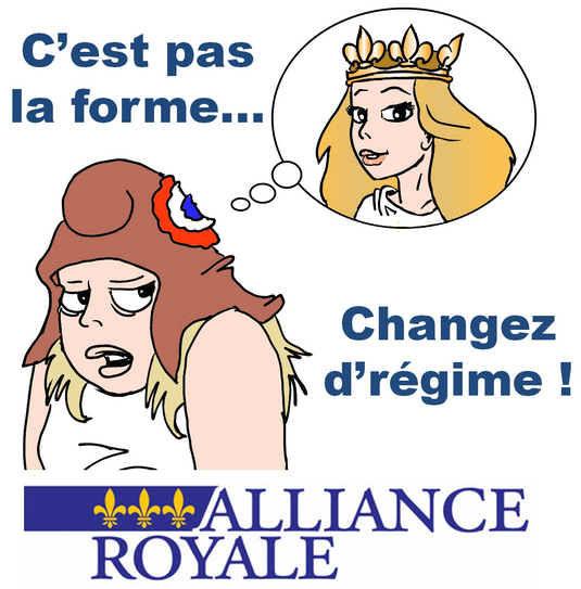 53409b4c1a7bc-alliance-royale-elections-municipales-2014-resultats-6-avril-2014